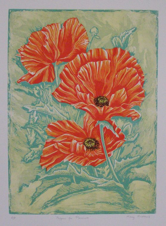 Mary Andrews - Poppies for Pleasure