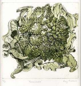 Mary Andrews - Romanesco