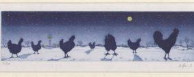 Bernd Hauck - Chickens