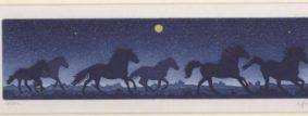 Bernd Hauck - Horses