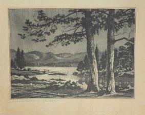 James Priddey - Loch Morlich