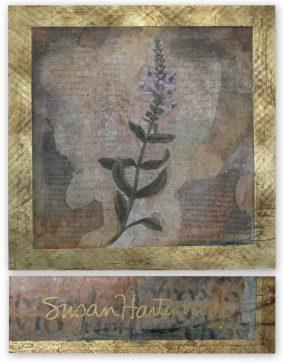 Susan Hartenhoff - Flora XXVII